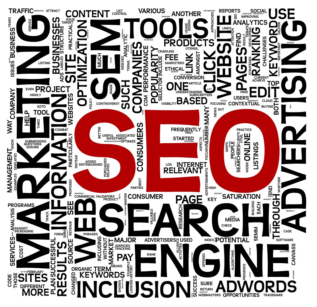Search engine optimization SEO concept in word tag cloud